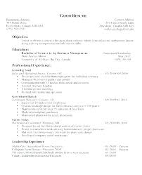 Examples Of An Objective On A Resume Simple Resume Format