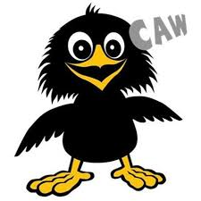 Image result for funny crows