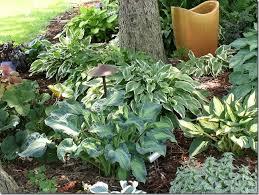 how to install garden edging bunnings