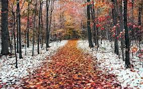 Fall Winter Wallpapers - Top Free Fall ...
