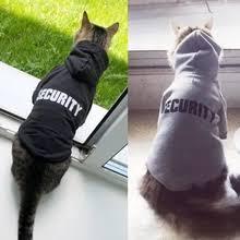 Cat Clothing_Free <b>shipping</b> on Cat <b>Clothing</b> in Cat Supplies, <b>Pet</b> ...