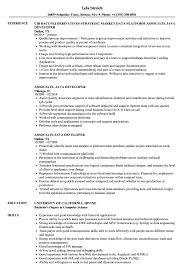 Java Developer Resume Associate Java Developer Resume Samples Velvet