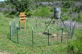 d i y game feeder corral trap for wild pigs wild wonderings 1 roll of bailing wire
