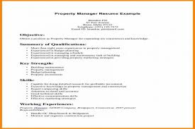 Resume Summary Examples Fascinating Good Resume Summary Free Resume Templates 28