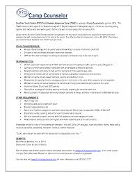 High School Guidance Counselor Resume Examples Templates Camp Sle