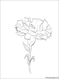 Dandelion Coloring Page Dandelion Coloring Pages Dailydealsitesorg