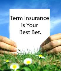 Term Life Quotes Impressive Quotes Term Life Insurance Quotes For Seniors