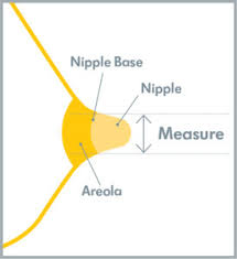 New Breastshield Sizing Tool Aids Clinicians Medela