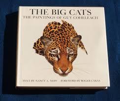 the big cats book