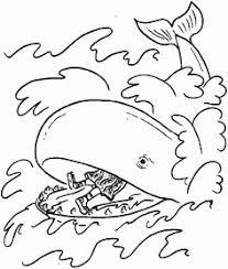 Kleurplaat Walvis Uniek 64 Beste Afbeeldingen Van Jona In De Walvis