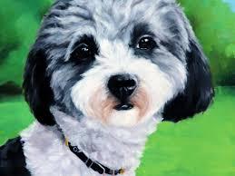 pet portrait pippa