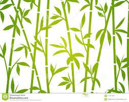 Gras Bamboe Van Het Achtergrond Het Japanse Aziatische