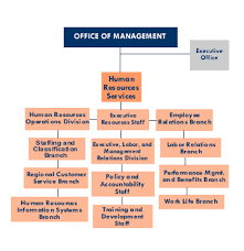 Human Resource Organizational Structure Chart Om Organizational Chart Office Of Human Resources Services