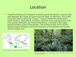 Emergent, upper canopy, understory, and forest floor. Biome Presentation Tropical Rainforests Ppt Download