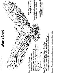 Barn Owl Coloring Page Color Me Owl Coloring Pages Owl Owl