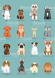 Dog Vectors  Photos and PSD files   Free Download furthermore  further Cat Face Stock Vector Illustration And Royalty Free Cat Face Clipart further Dogs Collection Icons Domestic Pets Happy Stock Vector HD  Royalty besides Dog free vector download  796 Free vector  for  mercial use furthermore  together with  moreover  as well  as well Cat Vectors  Photos and PSD files   Free Download likewise 12 Cute Dogs   Dog  Dog illustration and Dalmatian dogs. on cute dogs cartoon icons set happy stock vector dog free download for commercial use cats funny little and cat coloring pages faceboul com christmas puppy