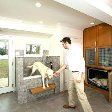pet friendly area rugs dog dc metro with contemporary recessed light durable