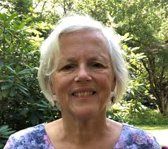 Plymouth Area Democrats | Suzanne Smith