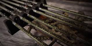 10 Best Carbon Arrows For Hunting 2019 Reviews Advanced