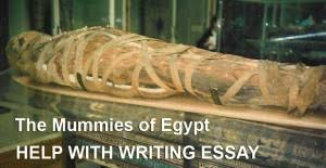 essay paper on the mummies of  essay paper on the mummies of