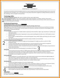 Summary For Resume Examples Professional Summary Resume Resumes For Sales Tips Examples 78