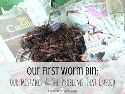 our first worm bin was a gift and we fussed over our new collection of