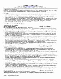 Solutions Architect Resume Solution Architect Cover Letter Lovely Bunch Ideas Cover Letter 10