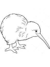 Small Picture Kiwi coloring pages Download and print Kiwi coloring pages