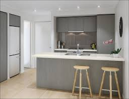 what color to paint kitchenKitchen  What Color To Paint Kitchen Cabinets Grey Kitchen Ideas