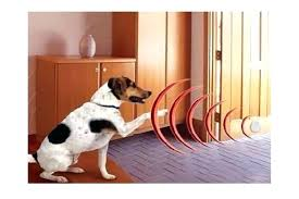 indoor invisible fence indoor electric dog fence system digital invisible fence dog training fence invisible fence