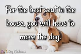 Quotes About Dogs Cool Dog Quotes Cool Funny Quotes