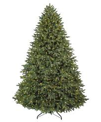 Christmas Tree Glowing In The Forest Stock Photo  Getty ImagesSherwood Forest Christmas Trees