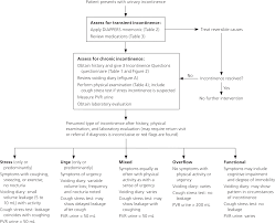 Chart Note Using History And Physical Style Diagnosis Of Urinary Incontinence American Family Physician