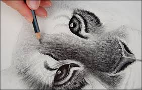 realistic lion face drawing. Plain Drawing Realistic Lion Head Drawing  Photo7 To Lion Face Drawing
