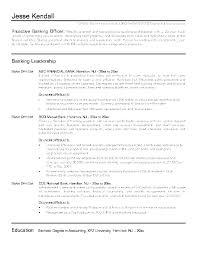 Asset Manager Resume Sample Resume Creator Simple Source