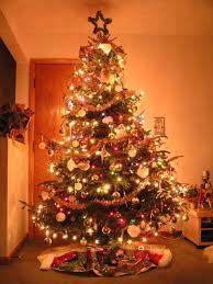 The Christmas tree is central to England's holiday celebration and,  although it had been seen in various places in England, it grew extremely  popular when ...