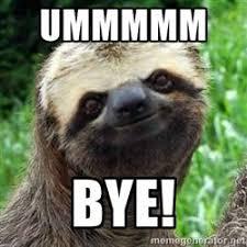 yeah. bye. #Cat #meme #funny #animals #humor #cute #sloth #bye ... via Relatably.com
