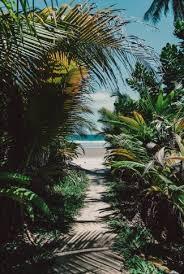 scenic walk to the beach