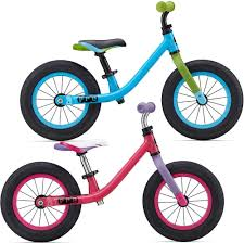 Giant Pre Push Kids Starter Bike 89 99 12 Wheel Age 2 3