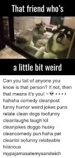 dogs funny and lol that friend who s a little bit weird can you