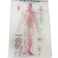 Acupuncture Charts 3 Posters Set In English Buy Acupuncture Charts Charts Acupuncture Point Model Product On Alibaba Com