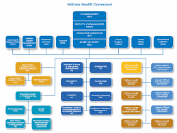Msc 2011 In Review Organization