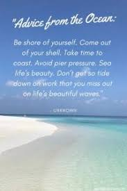 sea shell quotes 30 best beach quotes you need to read world on a whim