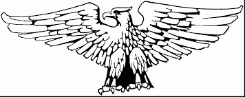 Small Picture incredible american eagle coloring page with eagle coloring page