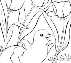 Spring Break Coloring Sheets Spring Break Printable Coloring Pages
