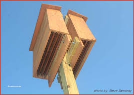 free plans for building bat houses beautiful house