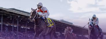 2014 Breeders Cup Charts Sprint Breeders Cup