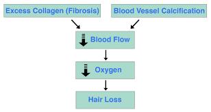 calcification fibrosis hair loss