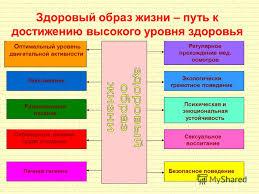 Презентация на тему Основные понятия о здоровье и здоровом  8 Здоровый образ жизни