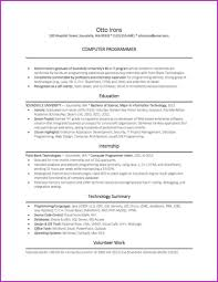 Beautiful Resume Example Entry Level Programmer Handyman Cover